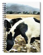 Paint Horses Spiral Notebook
