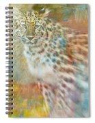 Paint Me A Cheetah Spiral Notebook
