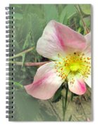 Paint Mines Wild Rose Spiral Notebook