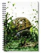 Paint Sculpture And Snail 3 Spiral Notebook