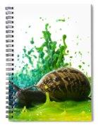 Paint Sculpture And Snail 4 Spiral Notebook