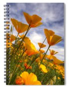 Paint The Desert With Poppies  Spiral Notebook