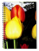 Painted Country Tulips Spiral Notebook