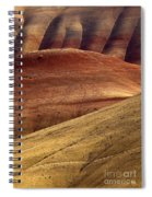 Painted Curves Spiral Notebook