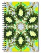 Painted Cymatics 181.66hz Spiral Notebook