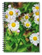 Painted Fleabane Spiral Notebook