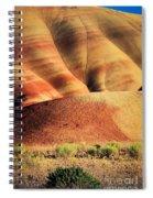 Painted Hills And Grassland Spiral Notebook