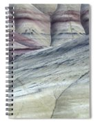 Painted Hills Oregon 8 Spiral Notebook