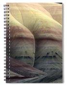 Painted Hills Oregon 9 Spiral Notebook