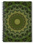 Painted Kaleidoscope 11 Spiral Notebook