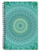 Painted Kaleidoscope 4 Spiral Notebook