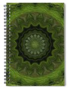 Painted Kaleidoscope 8 Spiral Notebook