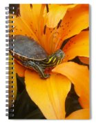 Painted Lilly Spiral Notebook