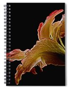 Painted Lily Spiral Notebook