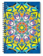 Painted Lotus Xv Spiral Notebook