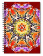 Painted Lotus Xvii Spiral Notebook