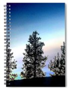 Painted Pine Tree Trio Spiral Notebook