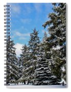 Painted Pines Spiral Notebook