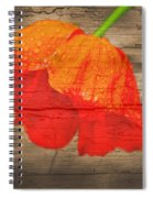 Painted Poppy On Wood Spiral Notebook