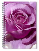 Painted Purple Rose  Spiral Notebook