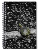 Painted Turtle In A Monochrome World Spiral Notebook