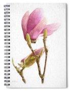 Painterly Pink Magnolia Spiral Notebook