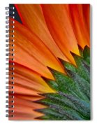 Painters Brush Spiral Notebook