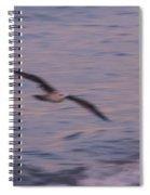 Painting Birds Spiral Notebook