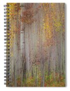 Painting Of Trees In A Forest In Autumn Spiral Notebook