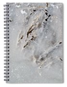 Painting On Ice Spiral Notebook