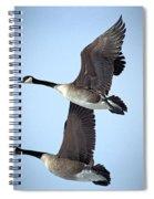 Pair In Flight Spiral Notebook