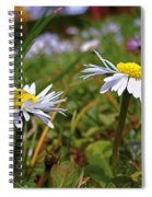 Pair Of Daisies Spiral Notebook