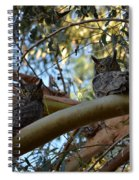 Pair Of Great Horned Owls Spiral Notebook