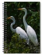 Pair Of Herons Spiral Notebook