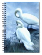 Pair Of Swans Spiral Notebook