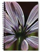 Pale Blue Flower Backlit Spiral Notebook