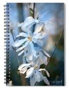 Pale Blue Spiral Notebook