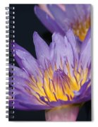 Pale Blue Yellow... Spiral Notebook