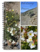 Pale Evening-primrose Spiral Notebook