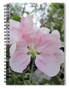 Pale Pink Crabapple Blossom Spiral Notebook