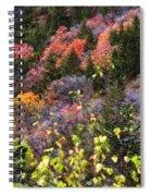 Palisades Spiral Notebook