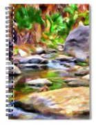 Palm Canyon Trail Spiral Notebook