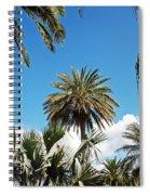 Palm City Spiral Notebook