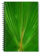 Palm Closeup Spiral Notebook