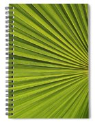 Palm Fron Abstract Spiral Notebook