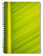 Palm Leaf Macro Abstract Spiral Notebook