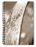 Palm Reader Spiral Notebook
