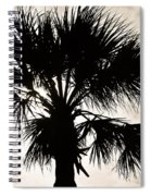 Palm Sihlouette Spiral Notebook