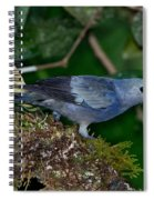 Palm Tanager Spiral Notebook