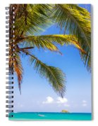 Palm Tree And Caribbean Spiral Notebook